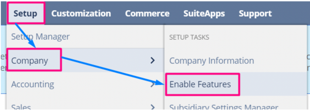 Enable NetSuite Features